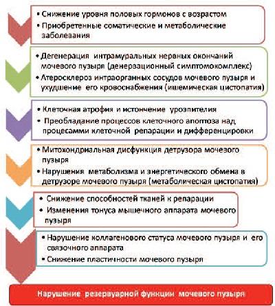 Схема патогенеза нарушения