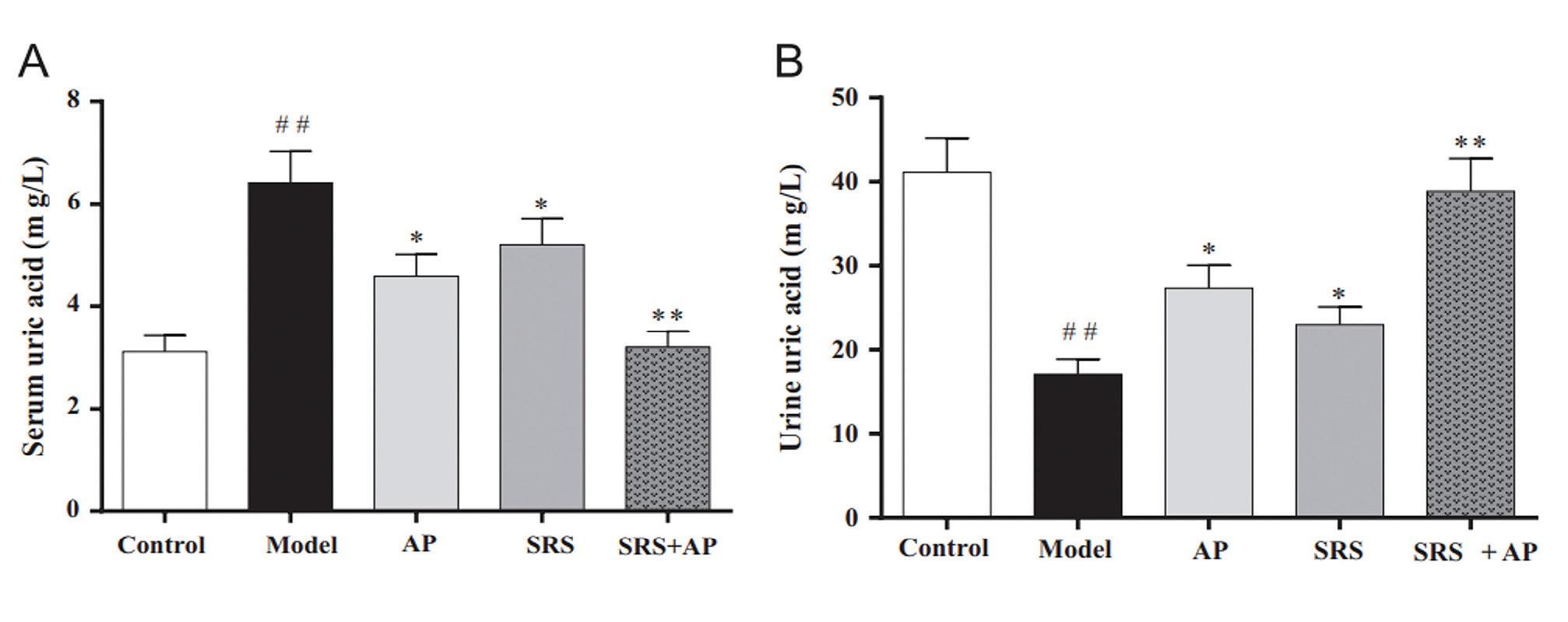 Влияние аллопуринола, SRS (сапонины Smilax riparia) и их комбинации на уровень мочевой кислоты в сыворотке крови (A) и в моче (B) у мышей с гиперурикемией.