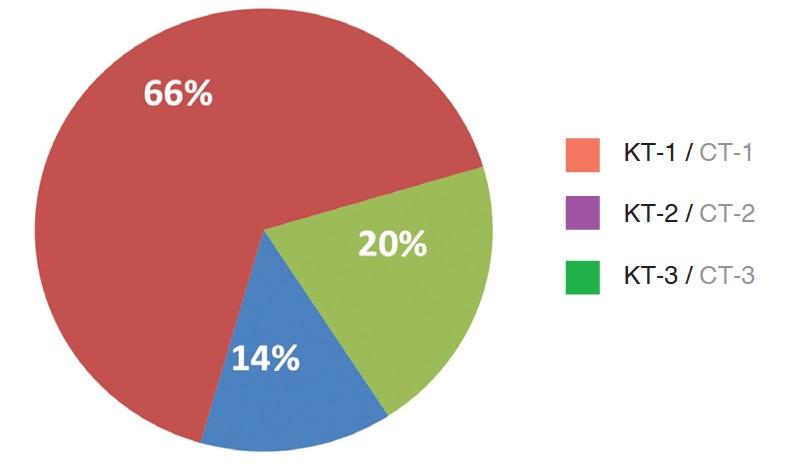 Степень тяжести пневмонии по данным КТ